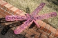 Whimsical Dragonfly Garden Recycled Art